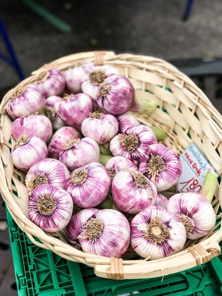 fresh garlic bürkliplatz