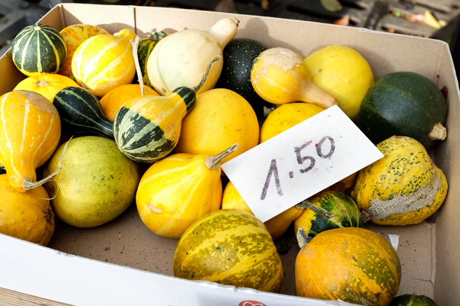 {Mini squash at the Bürkliplatz farmers' markets in Zurich}