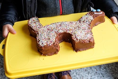 dinosaur cake on Tupperware stand