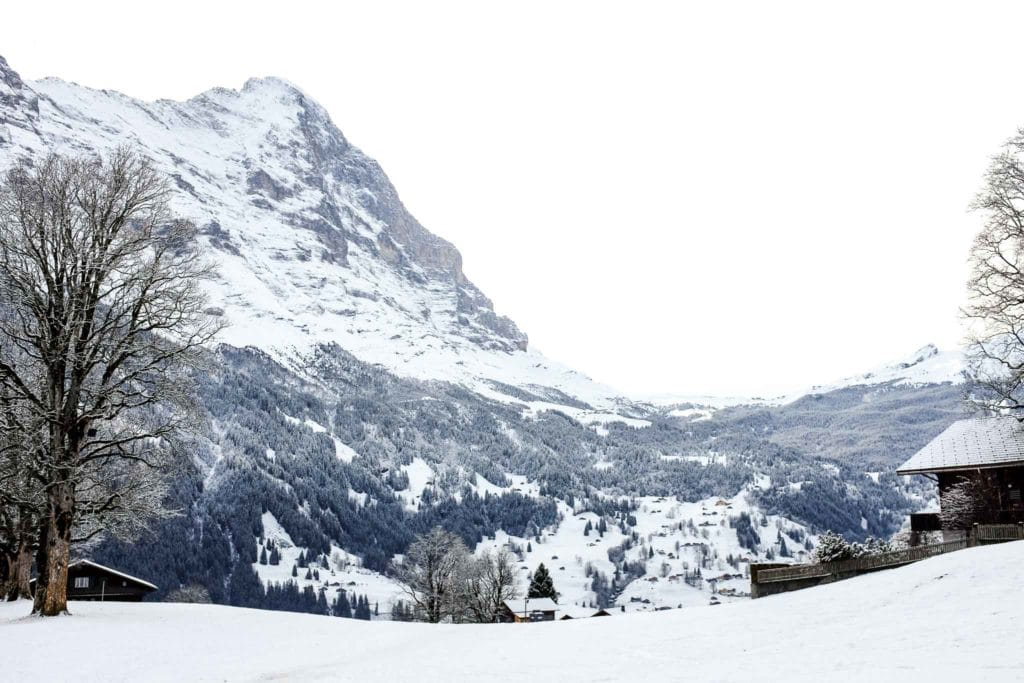 mountain views at bodmi grindelwald